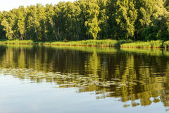 由河的7月早晨 免版税库存照片