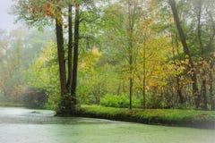 由河的绿色木头 免版税库存图片