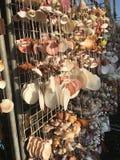 由海壳做的项链在纪念品市场失去作用 免版税库存图片