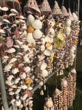 由海壳做的项链在纪念品市场失去作用 免版税图库摄影