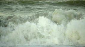 由海岸的夏天波浪 影视素材