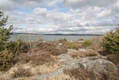 由海岸的早期的春天 免版税库存照片
