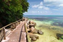 由海洋的路有大石头和绿色植物的 免版税库存照片