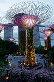 由海湾光展示的庭院,新加坡 库存照片