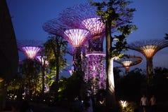由海湾的庭院在新加坡 免版税库存照片