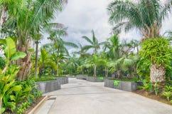 由海湾的庭院,新加坡 免版税库存图片