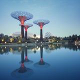 由海湾的庭院,新加坡 库存图片