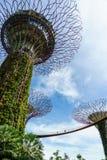 由海湾的庭院,新加坡 图库摄影
