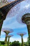 由海湾的庭院,新加坡 免版税图库摄影