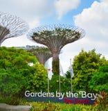 由海湾的庭院 新加坡 免版税库存照片