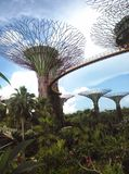 由海湾的庭院 图库摄影