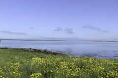 由海湾的美好的天 免版税库存照片