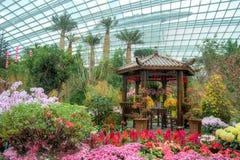 由海湾,花圆顶的庭院: 春节 免版税库存图片