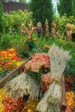 由海湾,花圆顶的庭院: 秋天收获 免版税图库摄影