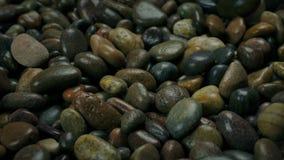由海滩的湿小卵石 影视素材