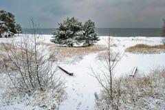 由海的冬天风景 免版税图库摄影