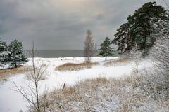 由海的冬天风景 免版税库存图片