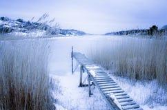 由海的冬天风景 免版税库存照片