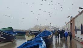 由海的冷的下雨天 免版税库存照片