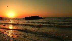 由海的日出,海景 股票录像