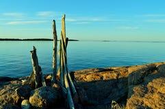 由海的漂流木头艺术 免版税库存图片