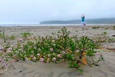 由海的瑜伽凝思 免版税库存照片