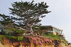 由海,加利福尼亚,美利坚合众国,美国的Carmel 免版税图库摄影