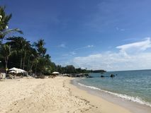 由海滩的暑假在苏梅岛海岛,泰国 免版税库存图片