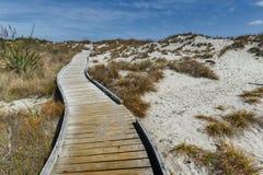 由海滩的木走道在Tauparikaka海洋储备,新西兰 免版税图库摄影