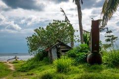由海洋的棕榈树 免版税库存照片