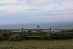 由海洋的篱芭在Aquinnah峭壁附近 免版税库存照片