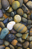 由海滩的黑圈子石头 库存图片