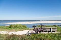 由海滩的紫色自行车和木头长凳 免版税库存图片
