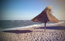 由海滩 库存照片