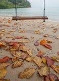 由海滩II倒空摇摆 免版税图库摄影