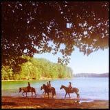 由湖拉尼尔海岛的马骑术 库存照片