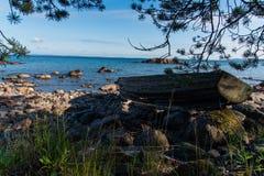 由湖的一条老和残破的小船 库存图片