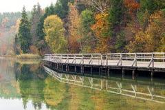 由湖的五颜六色的秋天风景 图库摄影
