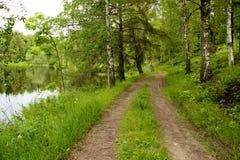 由湖的农村路 免版税图库摄影
