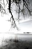 由湖的单色软性 免版税图库摄影