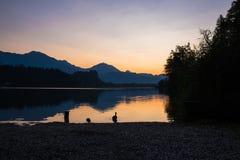 由湖的生活 免版税库存图片