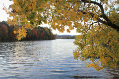 由湖的秋天颜色 库存照片