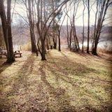 由湖的秋天 库存照片