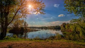 由湖的美丽的景色在日落期间的森林里在一个夏天 免版税库存照片