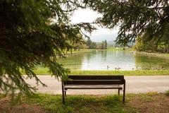 由湖的长凳 免版税库存图片