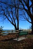 由湖的长凳 免版税库存照片