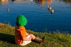 由湖观看的鸭子的男孩 免版税库存照片