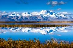 由湖Manasarovar的高峰Naimona'nyi 免版税图库摄影