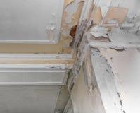 由湿气的天花板和墙壁损伤 库存照片