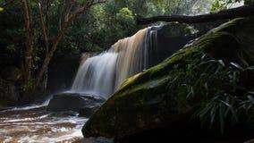 由瀑布的萨莫斯, Somersby,新南威尔斯,澳大利亚 库存图片